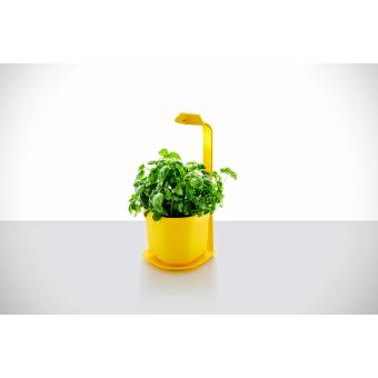 Mini potager de cuisine tregren genie jaune 3 plantes - Potager de cuisine ...