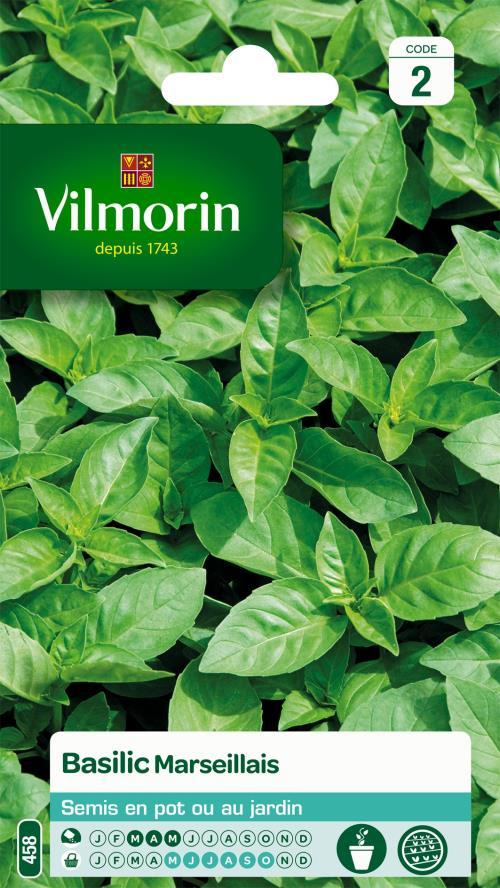 Basilic Marseillais Extrêmement Parfumé Vilmorin