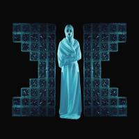 THE DEMONSTRATION/LP