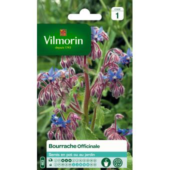 VILMORIN FND BOURRACHE OFFICINALE*******