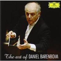 The Art of Daniel Bareboim