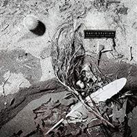 SECRETS OF THE BEEHIVE/LP