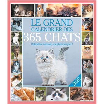 Calendrier Chat 2020.Le Grand Calendrier Des 365 Chats 2020