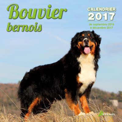 Calendrier 2017 Bouvier bernois