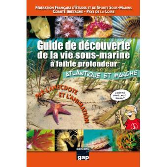 Guide de découverte de la vie sous-marine à faible profondeur