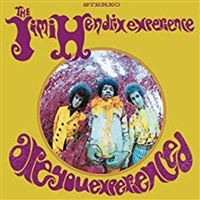 ARE YOU EXPERIENCED/LP