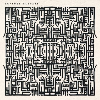 Elevate - LP 12''