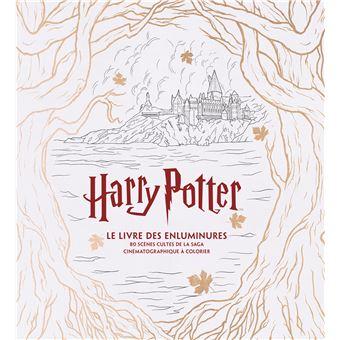 Harry potter le grand livre de coloriage