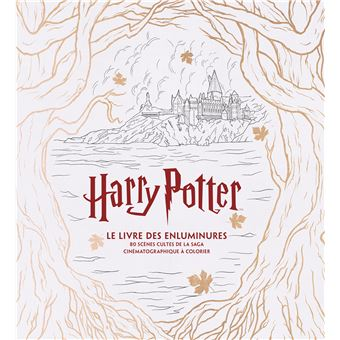 Harry Potter Le Livre Des Enluminures 80 Scenes Cultes De La Saga Cinematographique A Colorier