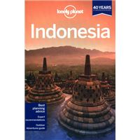 INDONESIA 2013 LONELY PLANET
