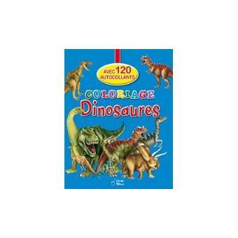 Livre Coloriage Dinosaure.Coloriage Dinosaures Avec 120 Autocollants Broche Collectif