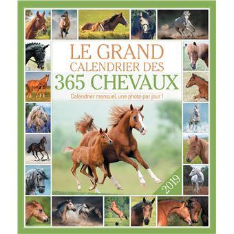 Le grand Calendrier 2019 des 365 chevaux