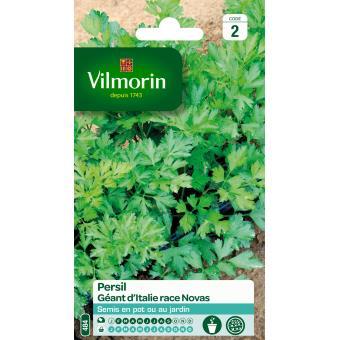 VILMORIN FND PERSIL GEANT D ITALIE RACE*