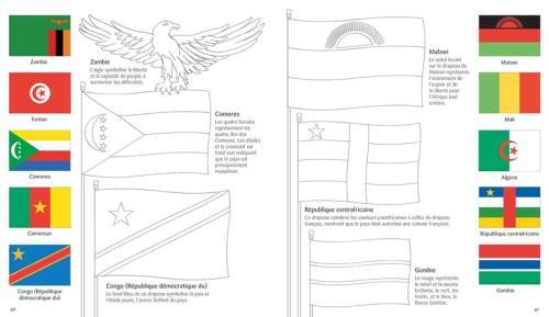 Drapeaux Du Monde A Colorier Broche Susan Meredith Ian Mcnee Hope Reynolds Achat Livre Fnac