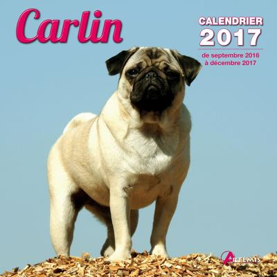 Calendrier 2017 Carlin