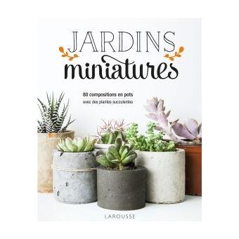 Jardins Miniatures Avec Des Plantes Succulentes Broche Misa