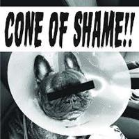 7-cone of shame-coloured-