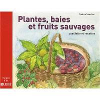 Plantes, baies et fruits sauvages