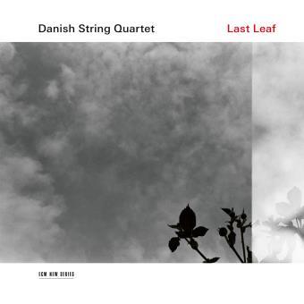 Last Leaf Edition Fourreau