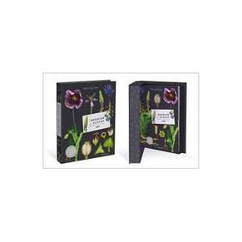 l'herbier des fleurs sauvages - boites et accessoires - p. vignes