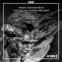 Bach : Cantates en dialogue