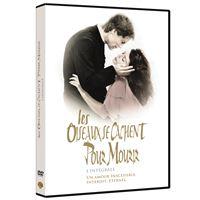 OISEAUX SE CACHENT POUR MOURIR-5 DVD-VF