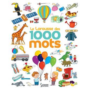 Le Larousse des 1 000 mots NE