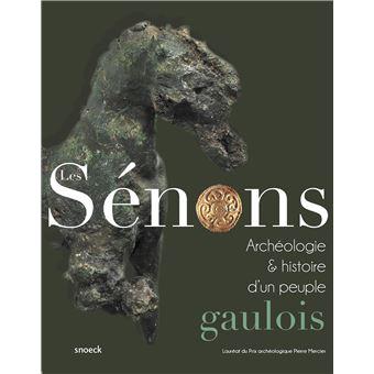 Les senons histoire et archeologie d'un peuple gaulois