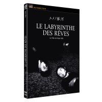 Le labyrinthe des rêves DVD