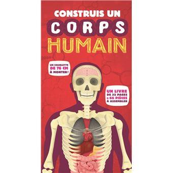 Construis un corps humain