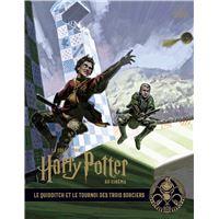 La collection Harry Potter au cinéma, Le Quidditch et le tournoi des Trois Sorciers