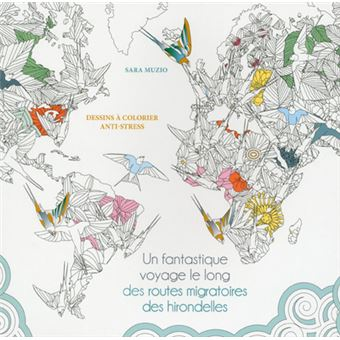 Coloriage Hirondelle Facile.Un Fantastique Voyage Le Long Des Routes Migratoires Des Hirondelles