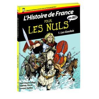 L Histoire De France En Bd Pour Les Nuls Tome 1 L Histoire De France En Bd Pour Les Nuls Les Gaulois