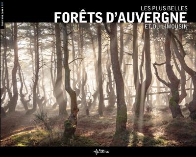 Les plus belles photographies des forêts d'Auvergne