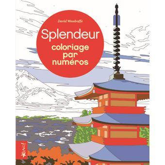 Splendeur - Coloriage par numéros