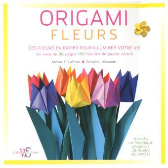 Origami Fleurs Fleurs Boîte Ou Accessoire Contextus Michael G