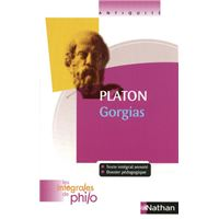 Int phil 41 platon gorgias