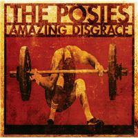 AMAZING DISGRACE/2CD