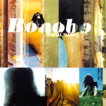 """Résultat de recherche d'images pour """"Bonobo – Animal Magic"""""""
