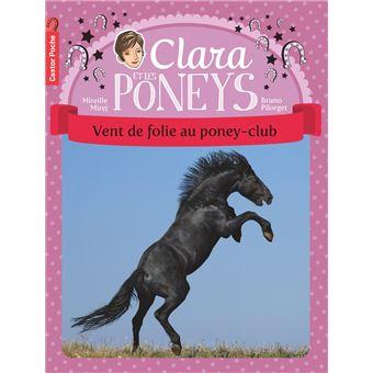 Clara et les poneysVent de folie au poney-club
