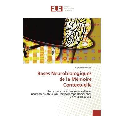 Bases neurobiologiques de la mémoire contextuelle
