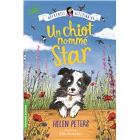 Un chien de berger nomme star