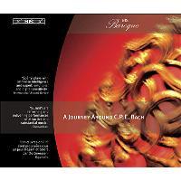 Concerto pour violoncelle - Sonate H119