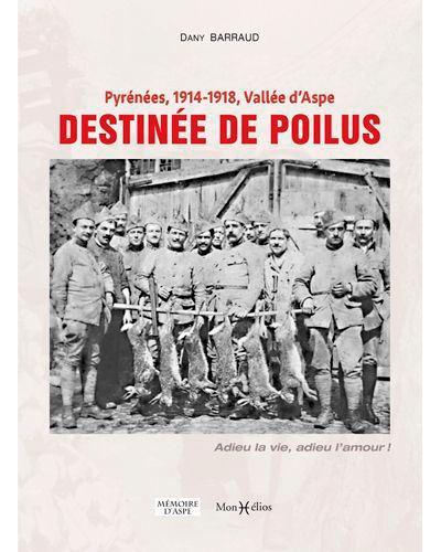 Pyrénées, 1914-1918, Vallée d'Aspe