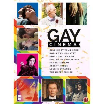 GAY CINEMA-NL