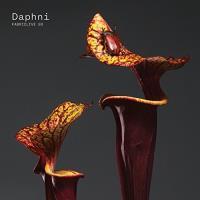 Fabriclive 93 Daphni