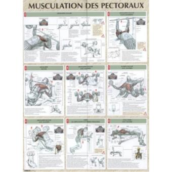 musculation pectoraux poster reli delavier achat livre fnac. Black Bedroom Furniture Sets. Home Design Ideas