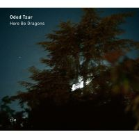 Here Be Dragons - CD
