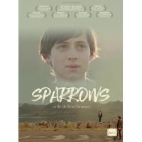 Sparrows DVD