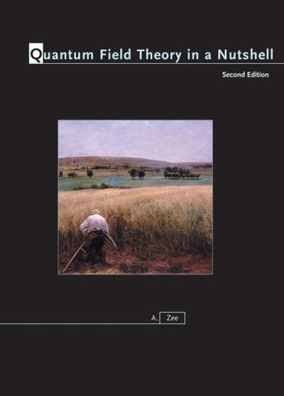 Quantum Field Theory in a Nutshell - Second Edition - 9781400835324 - 64,98 €